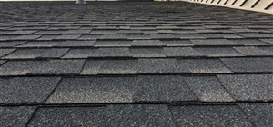 What You Should Look for in a Roofing Estimate