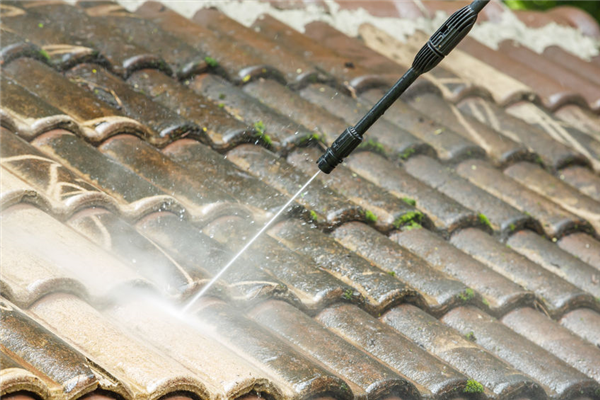 Get Your Roof Professionally Cleaned This Summer