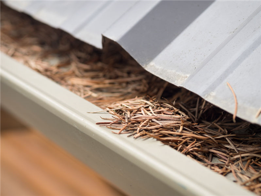 Are Your Gutters Working Against You?